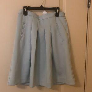 Ann Taylor loft pleated loft  skirt with pockets!